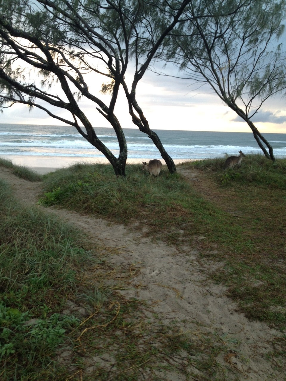 Caravanning On The Sunshine Coast