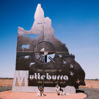 Muttaburra512